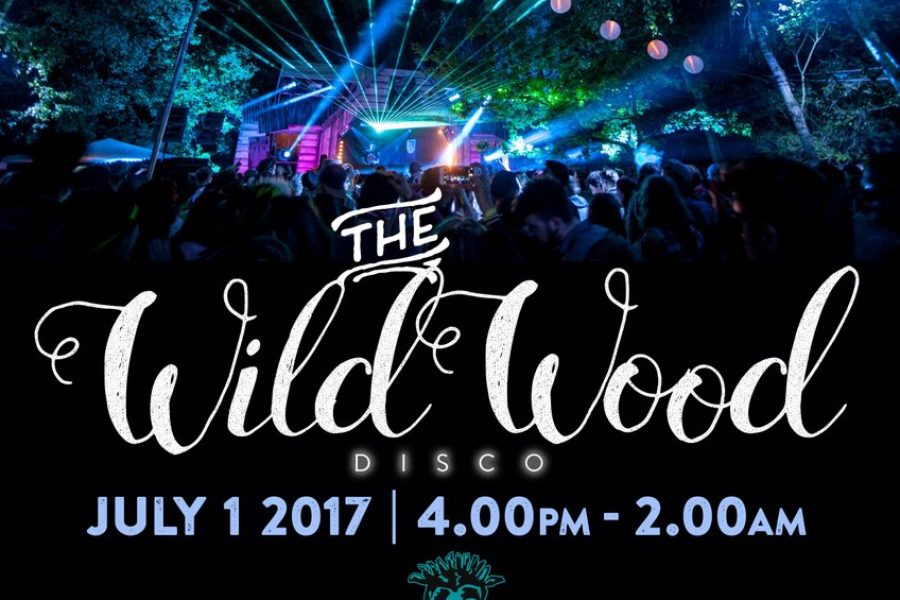 The Wild Wood Disco