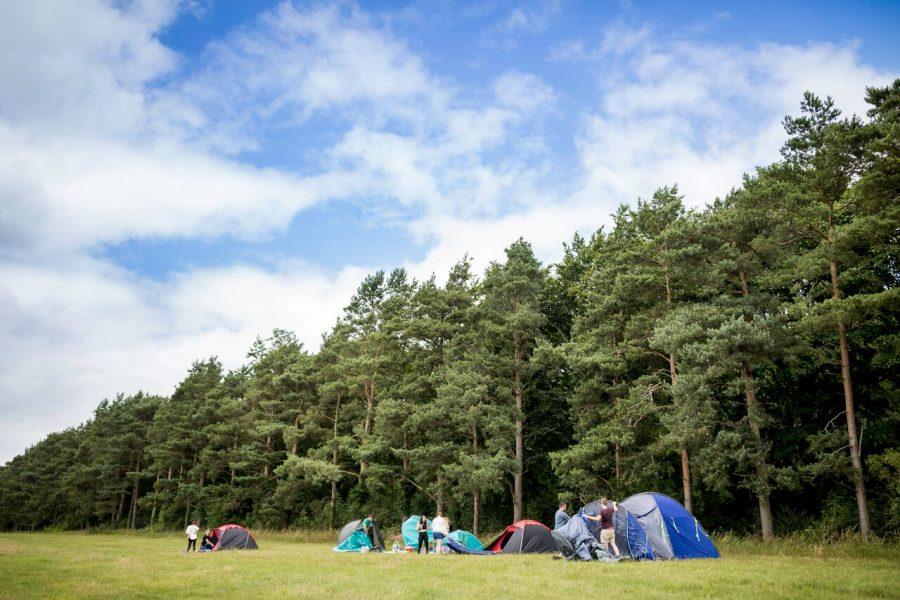 The Wild Wood Rumpus  – further info